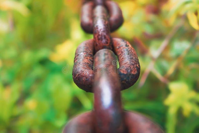 Corrente de aço grossa no foco macio borrado do fundo fotografia de stock royalty free
