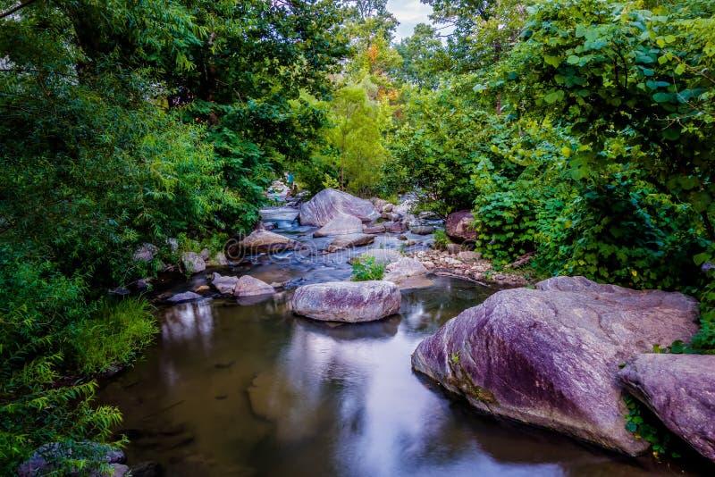 Corrente del fiume che entra sopra le formazioni rocciose nelle montagne immagine stock libera da diritti