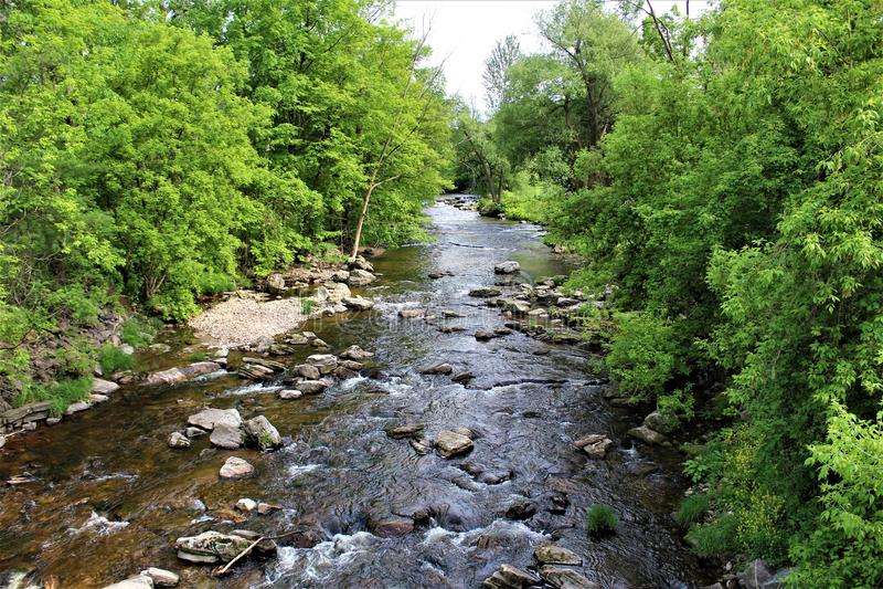 Corrente del fiume della trota, Franklin County, Malone, New York, Stati Uniti immagini stock
