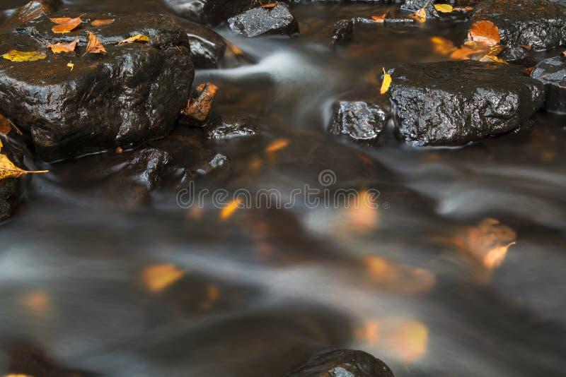 Corrente dell'acqua di autunno immagine stock