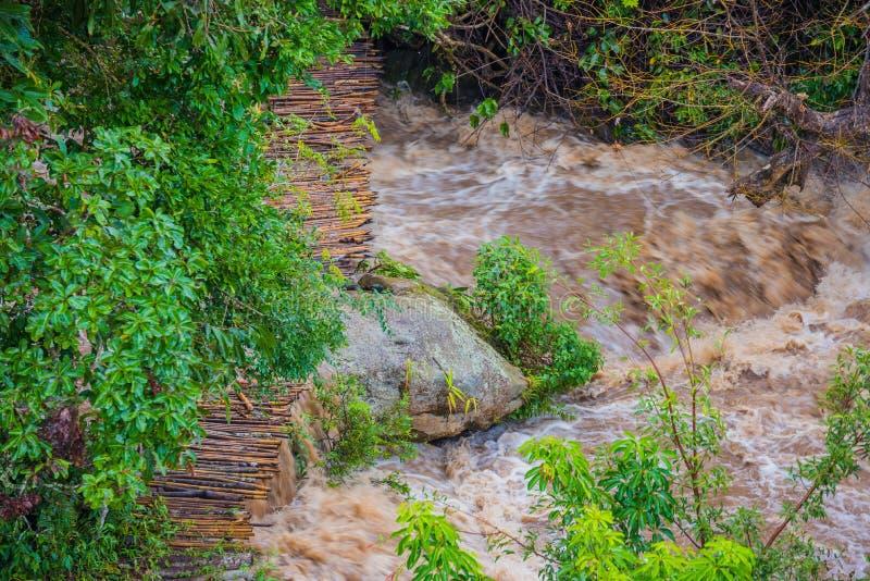corrente dell'acqua di tasso alto in fiume fotografia stock libera da diritti