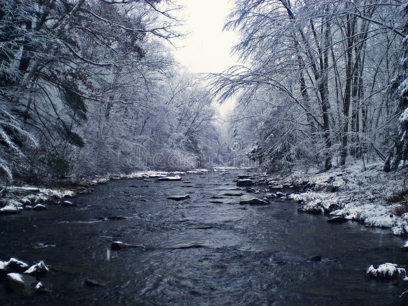 Corrente della trota di inverno immagini stock