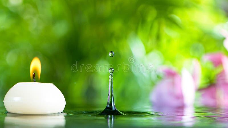 Corrente di acqua che fuoriesce da bambù, terme e pozzanghere immagine stock