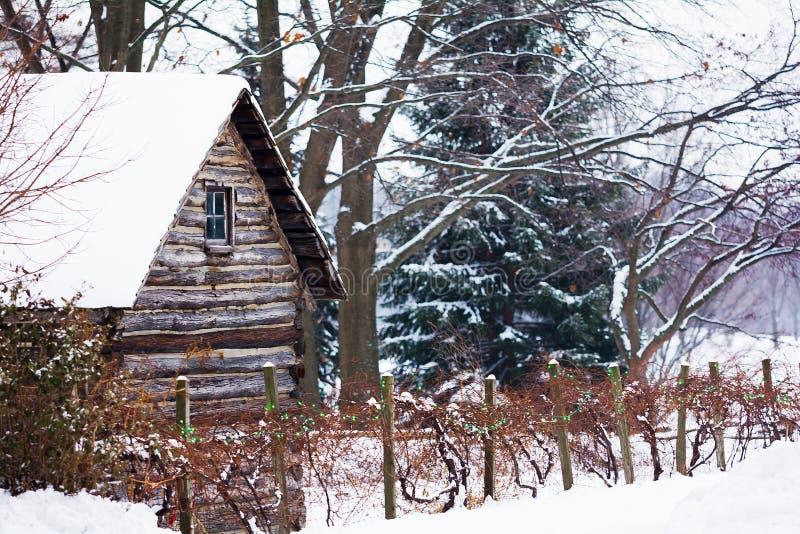 Corrente di inverno di Snowy immagine stock