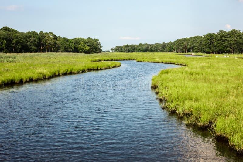 Corrente di marea dello stagno attraverso la palude d'acqua salata immagini stock