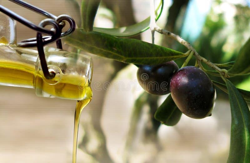Corrente ed olive dell'olio fotografia stock libera da diritti