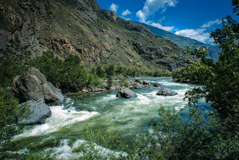 Corrente ruvida del fiume fra le rive e gli alberi di larice di pietra rocciosi su un fondo delle colline verdi e del cielo blu F fotografie stock libere da diritti
