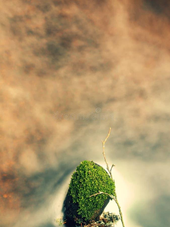Corrente spumosa della montagna fra le pietre muscose verdi immagine stock libera da diritti