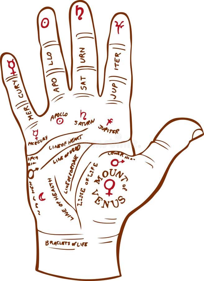 Correspondencia de la lectura de la palma ilustración del vector