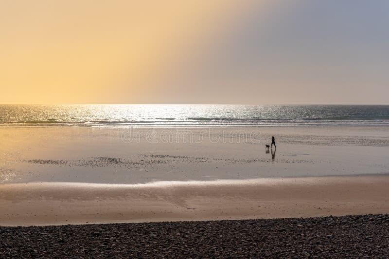 Corrida com seu cão em uma praia no por do sol foto de stock royalty free