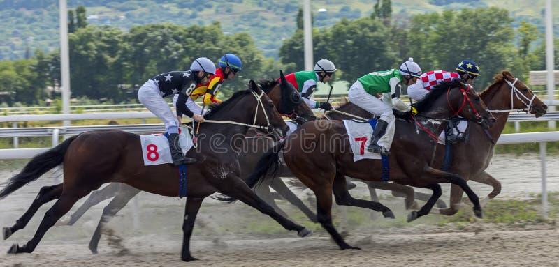 Corrida de cavalos do prêmio do primeiro presidente do Republ checheno foto de stock royalty free