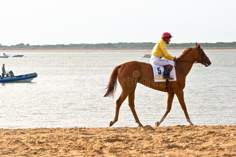 Corrida de cavalos em Sanlucar de Barrameda, Espanha fotografia de stock royalty free
