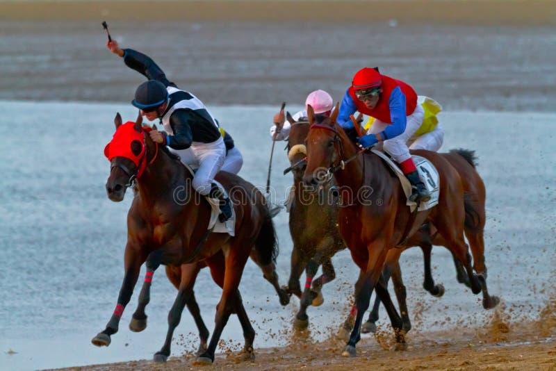 Corrida de cavalos em Sanlucar de Barrameda, Espanha, em agosto de 2011 fotografia de stock royalty free