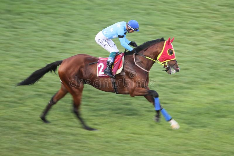 Corrida de cavalos de Istambul fotografia de stock