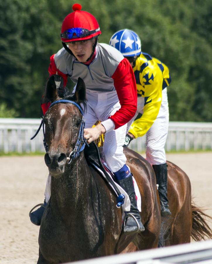 Corrida de cavalos para o prêmio da memória Prokhorov em Pyatigorsk fotos de stock