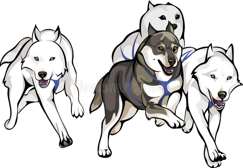 Corrida dos cães de trenó ilustração do vetor