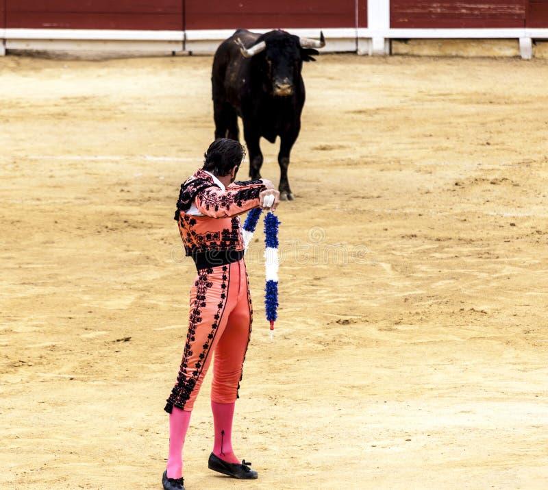 Corrida española Los ataques de toro enfurecidos el torero España 2017 07 25 2017 Vinaros Corrida monumental de toros imagen de archivo libre de regalías