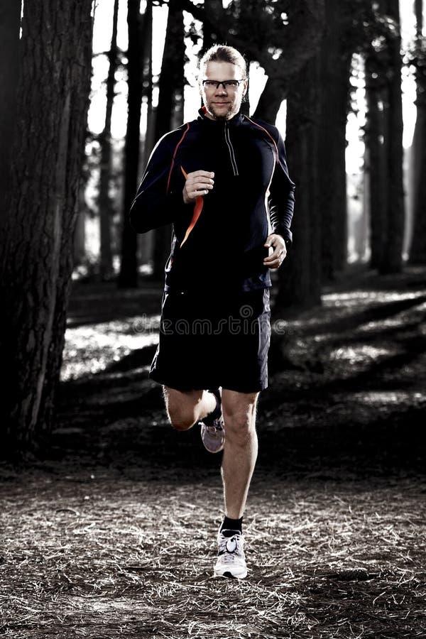 Corrida na floresta foto de stock