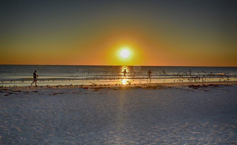 Corrida na praia fotos de stock royalty free