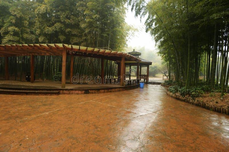 corridoio di legno lungo in giardino botanico fotografia stock libera da diritti