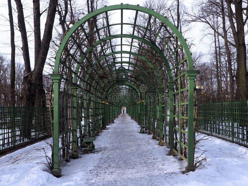 The corridor of green garden arches stretching into the horizon. stock image