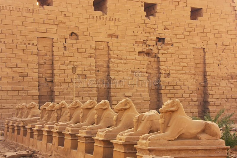 Corridor of Sphynxes, Karnak temple complex, Luxor royalty free stock image
