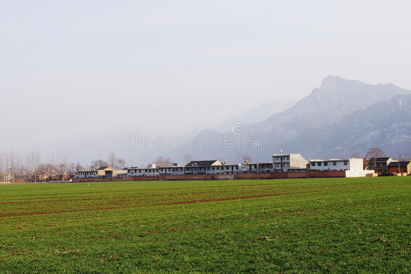 A view of the countryside in the north Qinling Mountains in winter. The Qinling Mountains is in and out of the fog. the farm houses are in the green wheat fields royalty free stock images