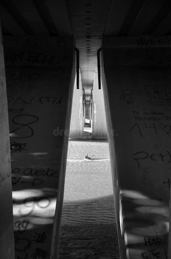 Corridore del kajak il giorno di votation fotografia stock libera da diritti