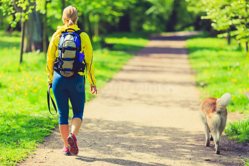Corridore della donna che cammina con il cane nel parco di estate immagini stock