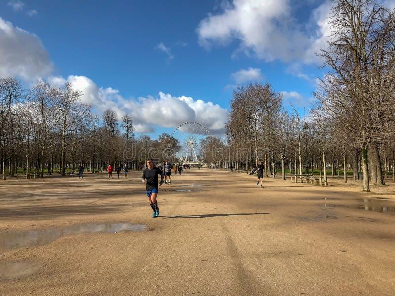 Corridore in febbraio springlike Tuileries, Parigi, Francia fotografia stock libera da diritti