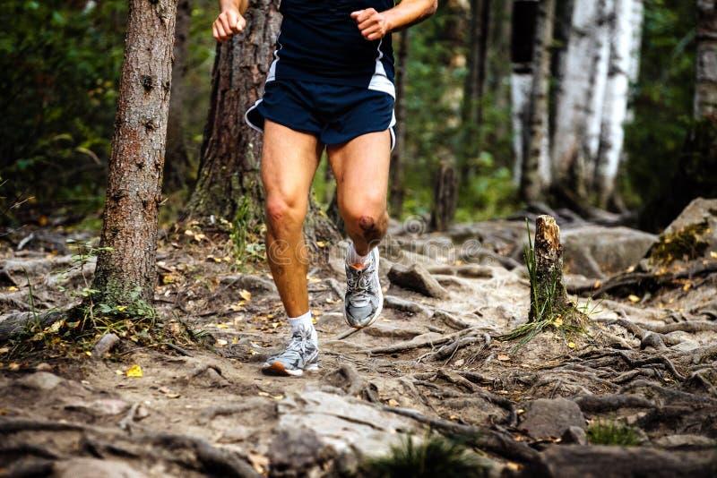 Corridore maratona corrente in legno fotografie stock