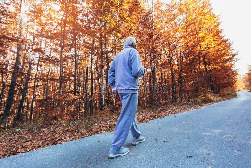 Corridore senior in natura Uomo sportivo anziano che corre nella foresta durante l'allenamento di mattina immagini stock libere da diritti