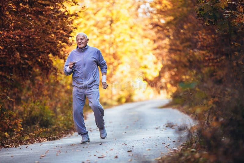 Corridore senior in natura Uomo sportivo anziano che corre nella foresta durante l'allenamento di mattina fotografia stock libera da diritti