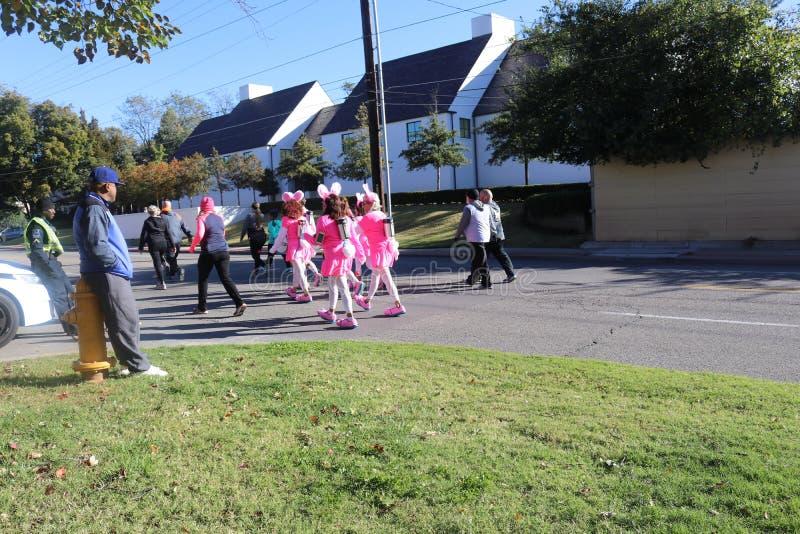 Corridori del coniglietto dello stimolatore al funzionamento di Tulsa giù il viale di Peoria fotografia stock libera da diritti