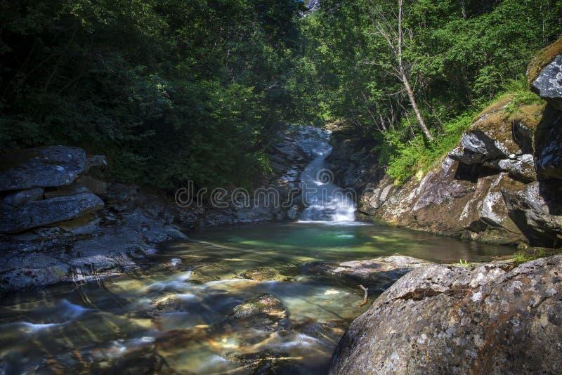 Corriente de color claro con un agujero de baño verde en el bosque imagen de archivo