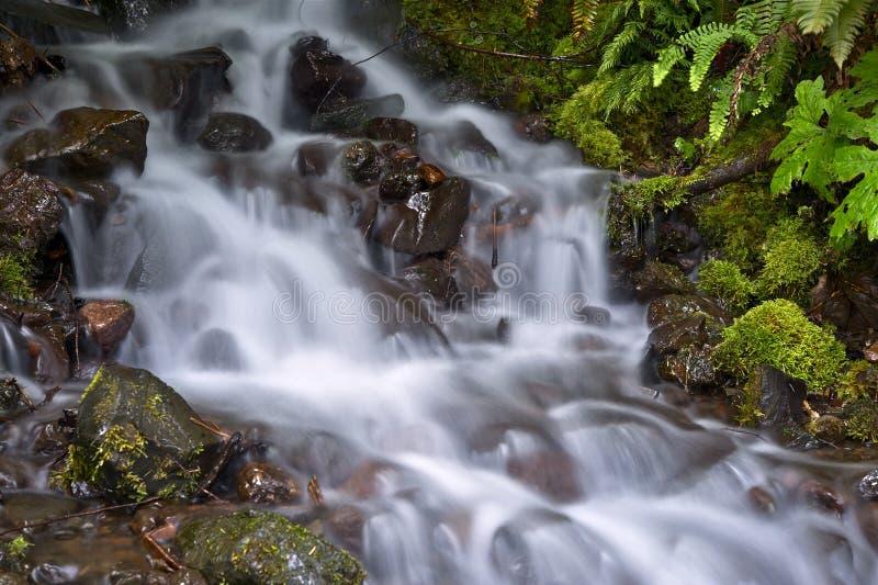 Corriente de la montaña foto de archivo libre de regalías