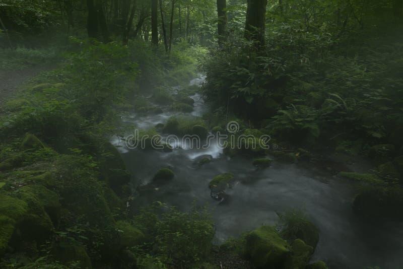Corriente de la montaña de Kitanizawa imagen de archivo