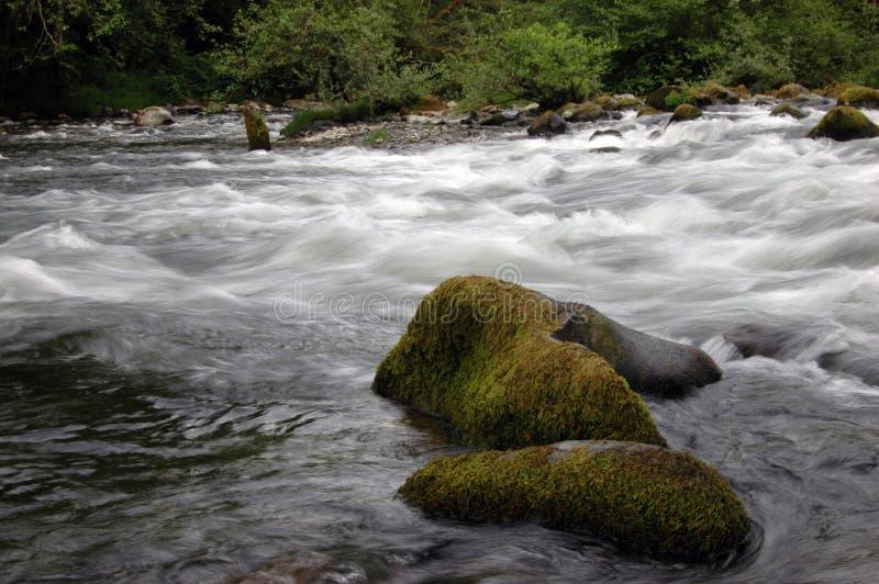 Corriente de la montaña de la cascada imagen de archivo libre de regalías