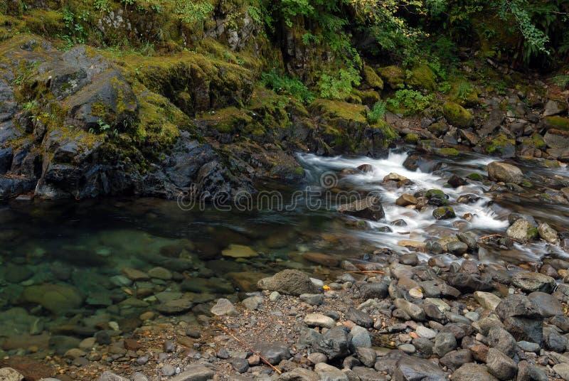 Corriente de la montaña de la cascada imágenes de archivo libres de regalías