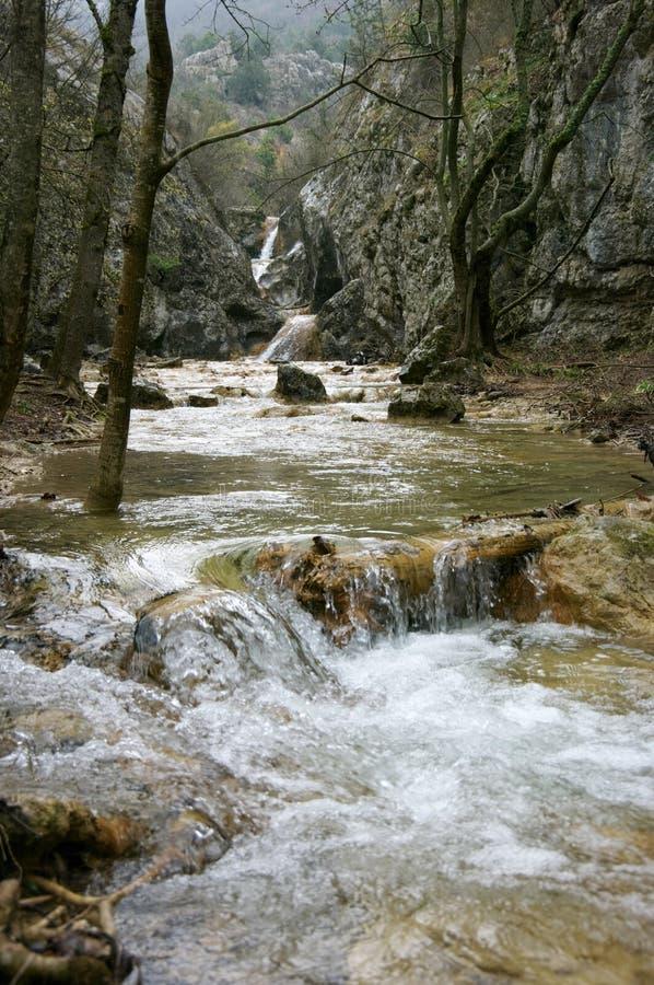Corriente de la montaña de la primavera foto de archivo libre de regalías