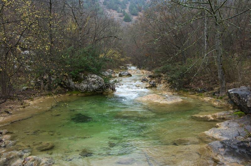 Corriente de la montaña de la primavera foto de archivo