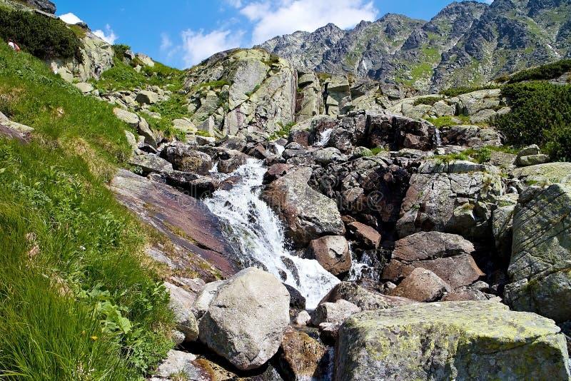 Corriente de la montaña que sale a raudales fuera del lago sobre la cascada de Skok en el valle de Mlynicka imagen de archivo libre de regalías