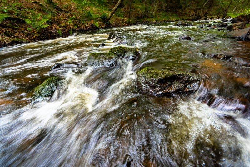 Corriente de precipitación sobre musgo y rápidos verdes de los cantos rodados fotos de archivo