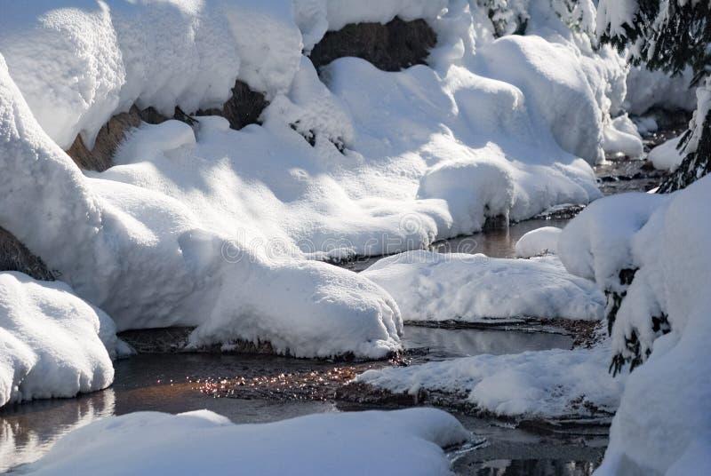 Corriente del bosque del invierno con mucha nieve foto de archivo libre de regalías