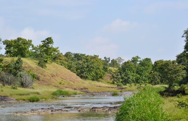 Corriente del río, cielo azul y colina en un bosque del Ind foto de archivo libre de regalías