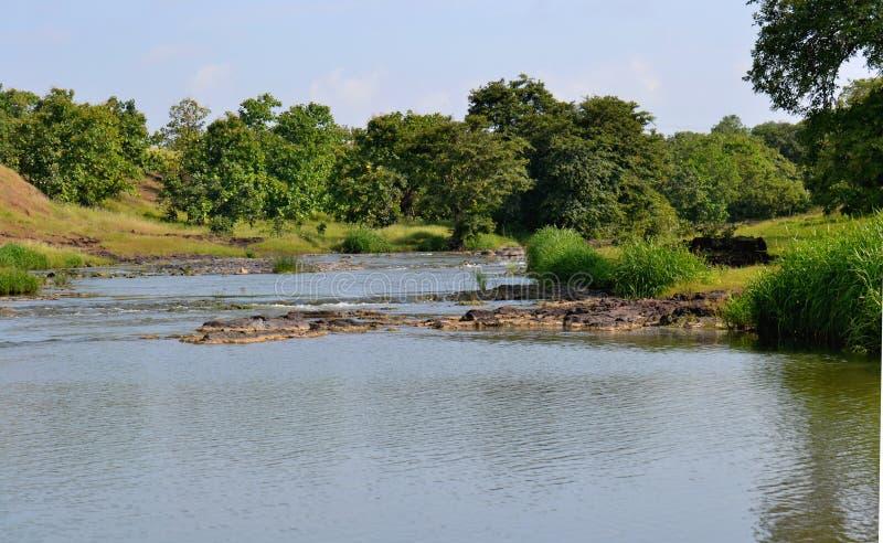 Corriente del río en un bosque de la India fotos de archivo