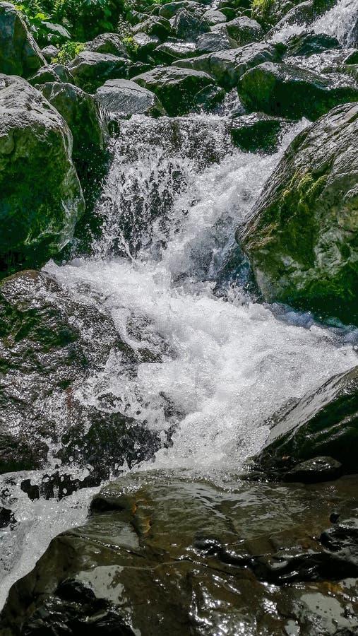 Corriente entre piedras, primavera del agua de la montaña fotografía de archivo