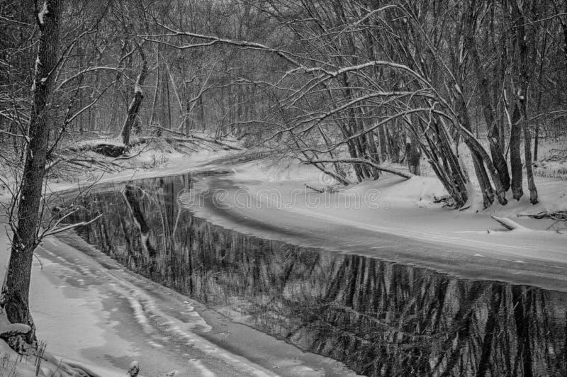 Corriente helada que serpentea a través del bosque de Ryerson foto de archivo