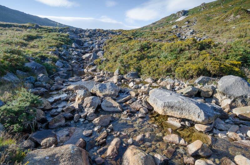Corriente pacífica de la montaña en Irlanda fotografía de archivo