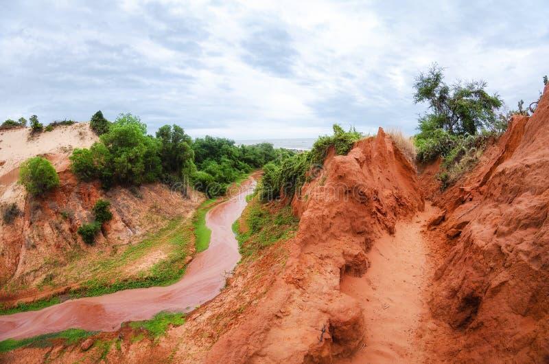 Corriente que corre abajo de un barranco rojo con el tr?bol verde en la orilla en Vietnam cerca de Mui Ne imagenes de archivo